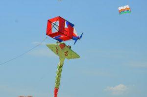 Фестиваль воздушных змеев2