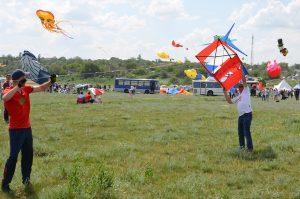 Фестиваль воздушных змеев3