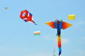 Фестиваль воздушных змеев4